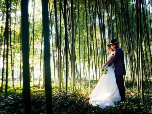Servizio fotografico matrimonio Porto Mantovano Mantova – Federica e Paolo